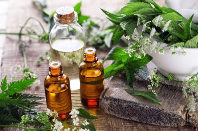 Zašto vam je neophodno esencijalno ulje nane