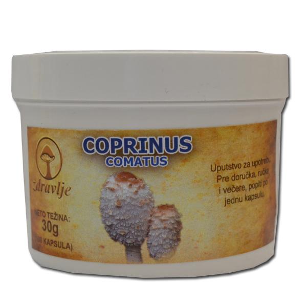 Coprinus Comatus 100 kapsula
