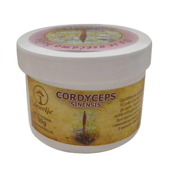 Cordyceps Sinensis 100 kapsula