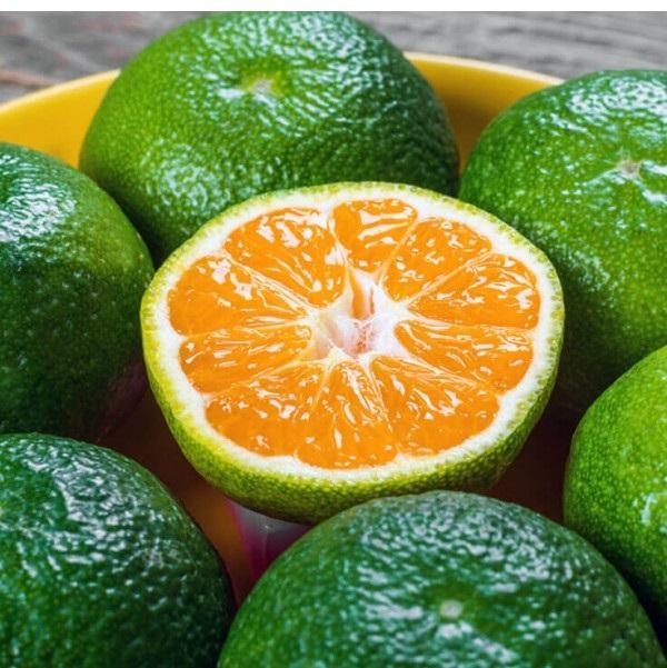 Hidrolat mandarine( voćna vodica) BIO 99% 50ml