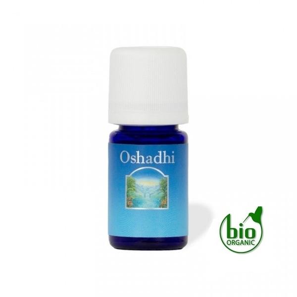 Oshadhi Eterično ulje NIAOULI 10ml