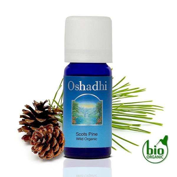 Oshadhi Eterično ulje BOR škotski 10ml