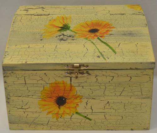 Kutija slanica 1