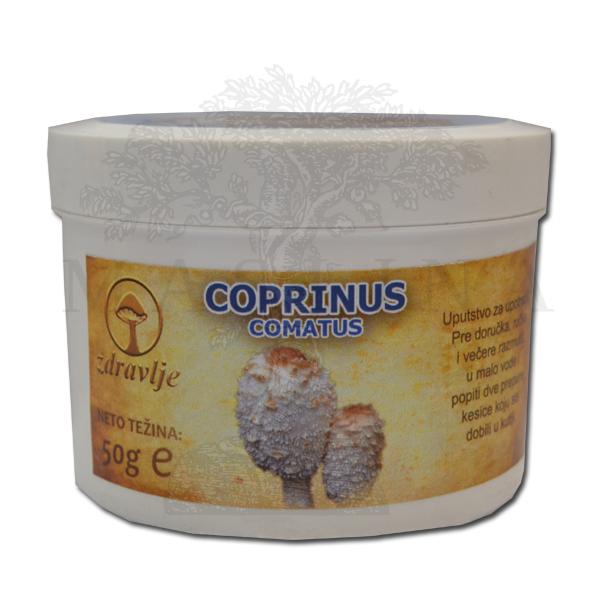 Coprinus comatus u prahu 50g